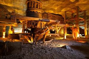 Krakow and Wieliczka Salt Mine Tour from Warsaw
