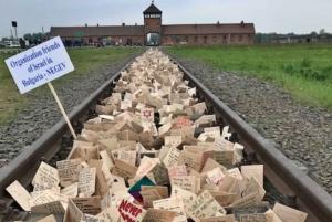 Kraków: Auschwitz and Birkenau Tour with Private Transport