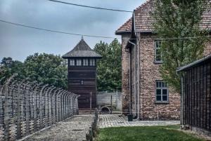 Krakow: Auschwitz and Wieliczka Salt Mine Combo Tour