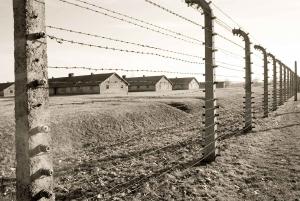 Krakow: Auschwitz-Birkenau and Salt Mine Full–Day Tour