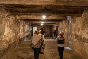 Krakow: Auschwitz-Birkenau Memorial & Museum Guided Tour