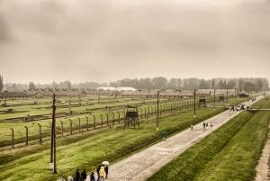 Krakow: Auschwitz Birkenau Museum Guided Tour with Pickup