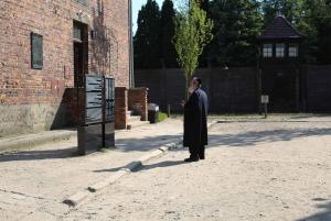 Krakow: Auschwitz Museum and Wieliczka Salt Mine Tour