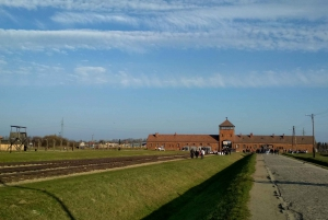 Krakow: Auschwitz Self-Guided Tour with Private Transfer