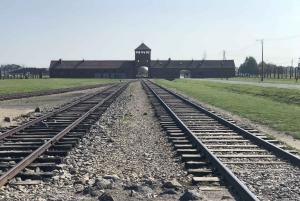 Krakow: Full-Day Auschwitz-Birkenau Sightseeing Tour