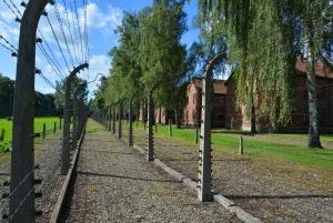Krakow: Guided Auschwitz Birkenau Tour