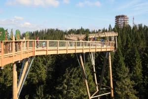 Krakow: Mountain Treetop Walk & Zakopane Day Trip