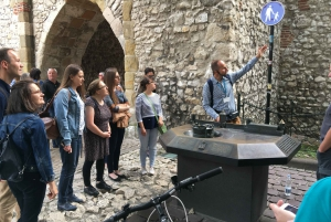 Krakow Old Town: 2-Hour Private Tour with Local Historian