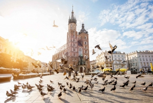 Krakow: Old Town 'Royal Route' Private Walking Tour