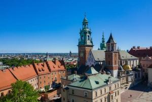 Krakow: Wawel Castle and Wawel Hill Audioguide Tour