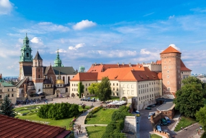 Krakow: Wawel Castle & Cathedral Guided Tour