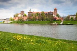 Krakow: Wawel Castle, Cathedral, Rynek Underground & Lunch