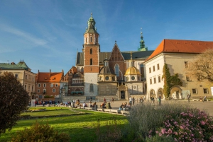 Krakow: Wawel Castle, Cathedral, Salt Mine, and Lunch