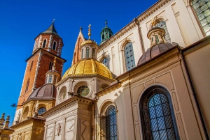 Krakow: Wawel Castle Private Tour and Skip-the-Line Ticket