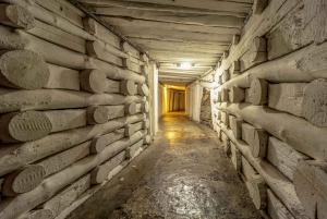 Kraków: Wieliczka Salt Mine Guided Tour with Hotel Pickup