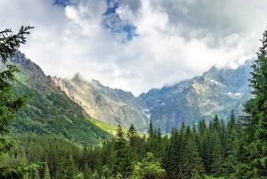 Krakow: Zakopane and Tatra Mountains Quad Bike Ride