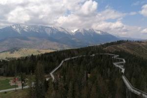Mountain Treetop Walk & Zakopane Day Trip