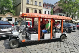 Private 2-Hour Sightseeing Tour by Electric Car