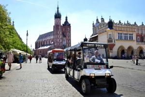 Private Guided City Tour by Electric Car