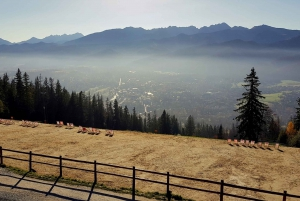 Private or Small-Group Zakopane Tour & Thermal Pools