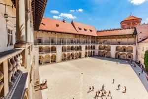 Skip-the-Line Wawel Castle and Hill Guided Tour