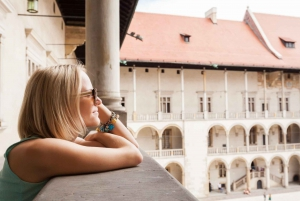 Skip the Line Wawel Castle & Cathedral Private Tour