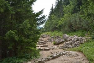 Tatras Mountains: Full-day Hiking Tour from Krakow