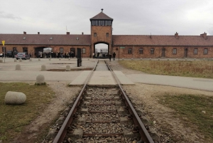 Warsaw: Full-day Tour to Krakow and Auschwitz by Train
