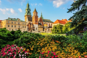 Wawel Castle and Wawel Hill Audioguide Tour