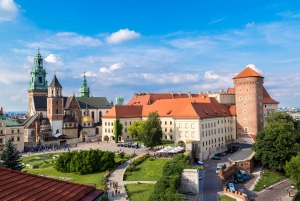 Wawel Castle, Cathedral, Salt Mine, and Lunch