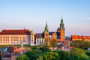 Wawel Castle Private Tour and Skip-the-Line Ticket