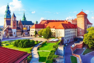 Wawel Cathedral Guided Tour with Admission Tickets