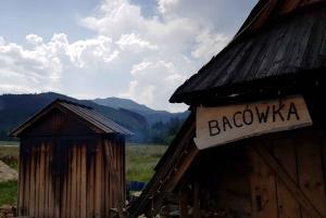 Zakopane and the Tatra Mountains from Krakow