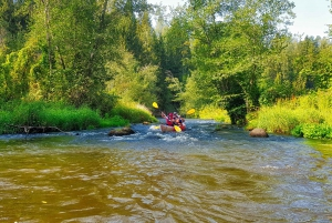 From Riga: Full-Day Scenic Gauja River Valley Kayaking Trip