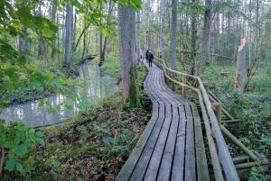 Kemeri National Park & Baltic Seaside Tour Bog Boardwalk
