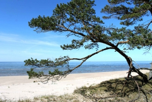 Kolka and Slitere: Seaside Day Tour with Private Guide