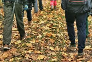 Visaginas: Wild Nature Hiking at Gražutės Regional Park