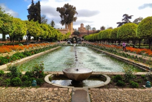 Alcazar of Cordoba Entry Ticket and Guided Tour