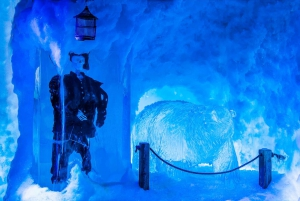 Amsterdam Canal Cruise and Entrance to Xtracold Icebar