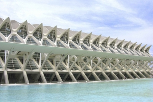 City of Arts & Sciences Tour with Rooftop Wine & Tapas