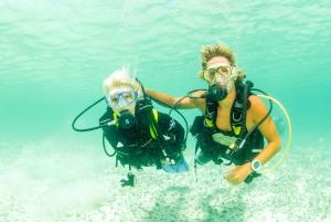 Discover Scuba Diving in Dubai