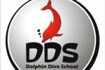 Dolphin Dive School