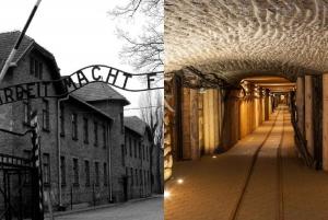 From Kraków: Auschwitz-Birkenau & Salt Mine in 1 Day
