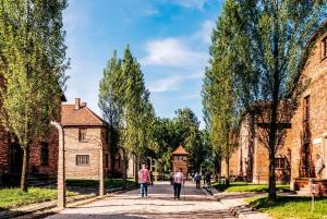 From Krakow: Auschwitz-Birkenau Tour with Pick-up Options
