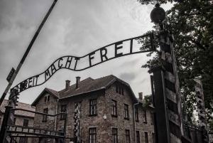From Krakow: Guided Auschwitz-Birkenau Tour