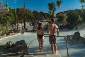 Hells Gate Mud Bath and Sulphur Spa Experience