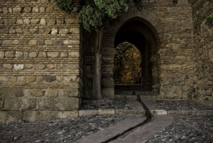 Málaga: Roman Theatre and Alcazaba Guided Tour