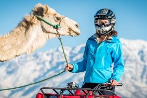 Marrakech: Quad Bike and Camel Ride Adventure Tour