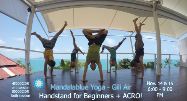 Yogi Handstand Training for Beginners + ACRO!