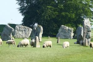 Avebury & Stonehenge Private Tour - Day Tour From Bath